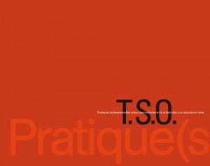 TSO-Guide_TSO-300x237