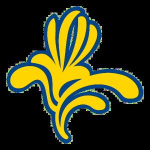 logo cocom